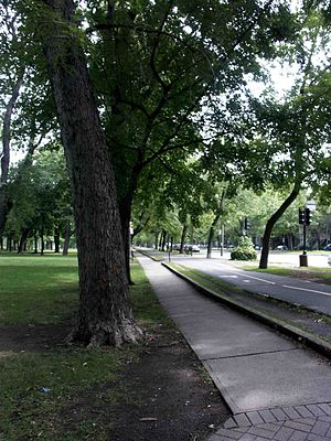 Piste cyclable, parc Lafontaine, Montréal 2005...
