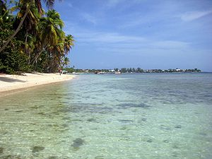 English: Beach in Tobago