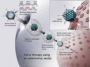 Gene therapy finally gets its day!