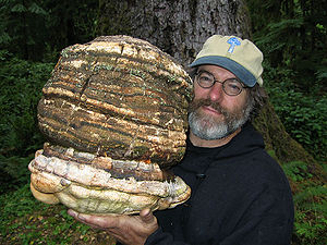, American mycologist (mushroom researcher), h...