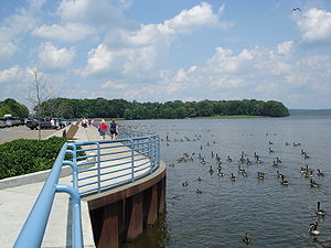 The Pymatuning Reservoir, a man made lake in O...