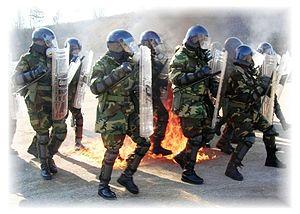 Riot control coespu (fire)