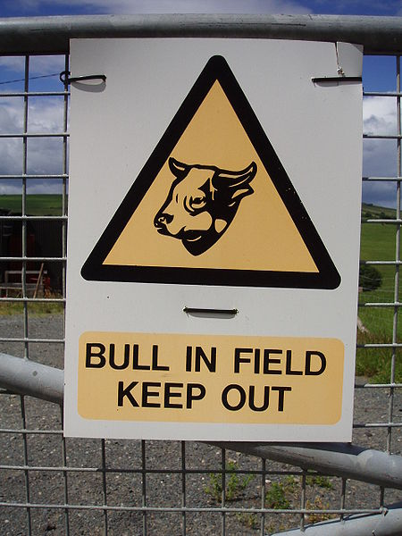 File:Warning sign - bull in field - keep out.JPG