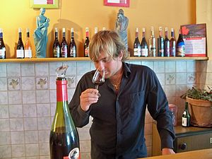 Wine tasting in Sérignan, Vaucluse