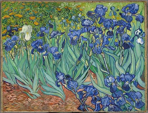 """Iris"", Vincent vanGogh (1889) (Dutch) [DgFVFAJo_30MeQ / Google Cultural Institute. Licensed under Public Domain via Wikimedia Commons]."