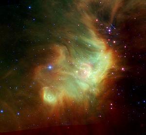 Perseus' Stellar Neighbors