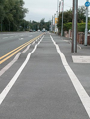 English: Speed Bumps for Cyclists ? The washbo...