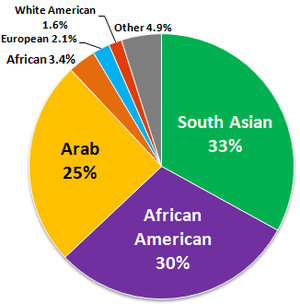 Ethnic composition of American Muslims, accord...