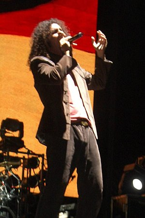 Serj Tankian on stage