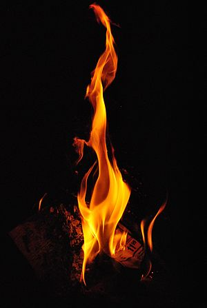 English: A picture of fire