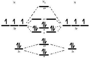 Nitrogen  Wikipedia