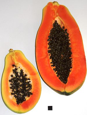 Papaya - two half fruits of different size