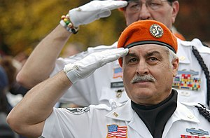 Two Vietnam veterans salute as the colors are ...