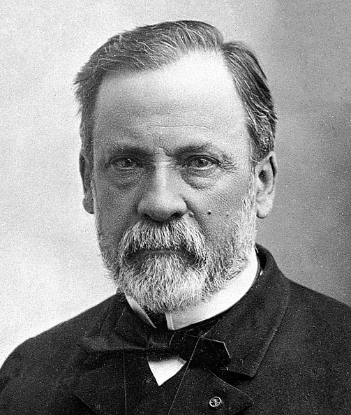 Datoteka:Louis Pasteur.jpg