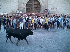 Pastrana Encierro3