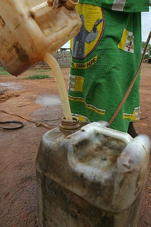 A woman is filling a UNICEF jerrycan at the Bo...