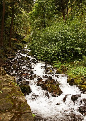 English: Wahkeena Falls, in the Columbia River...