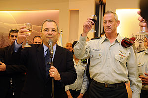 Flickr - Israel Defense Forces - Lieutenant Ge...