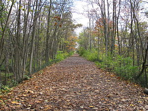 English: Nature trail at Yates Cider Mill.