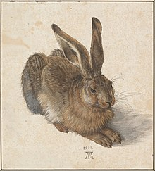 A painting of a hare with large ears.