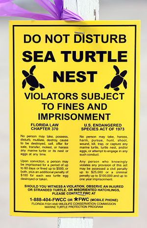 Legal posting related to sea turtles and their...