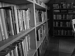 This is a picture of bookshelves in a tiny lib...
