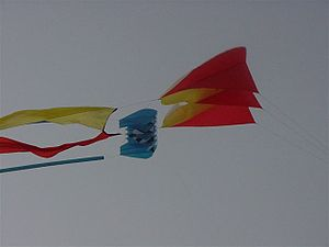 2 Flow Form kites