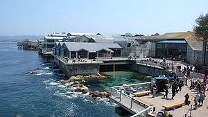 Back view of Monterey Bay Aquarium.