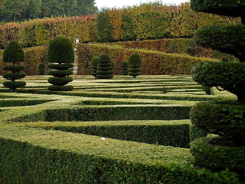 Château de Villandry jardin topiaire