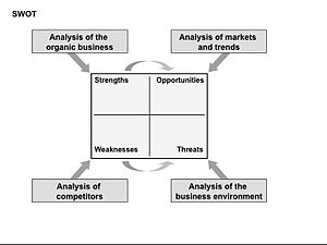 English: The Organic Business Guide SWOT