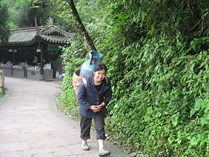 Chinese woman carrying