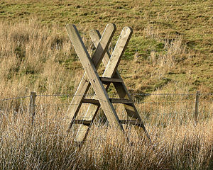 Ladder stile in Snowdonia