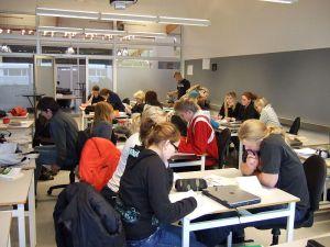 Elevar i hardt læringsarbeid. Foto: Baldur Blöndal/Wikipedia