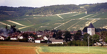 A photo from 1987 showing vineyards and a vill...