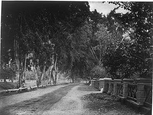 Nederlands: Foto. De Tanah Abang in Batavia, W...