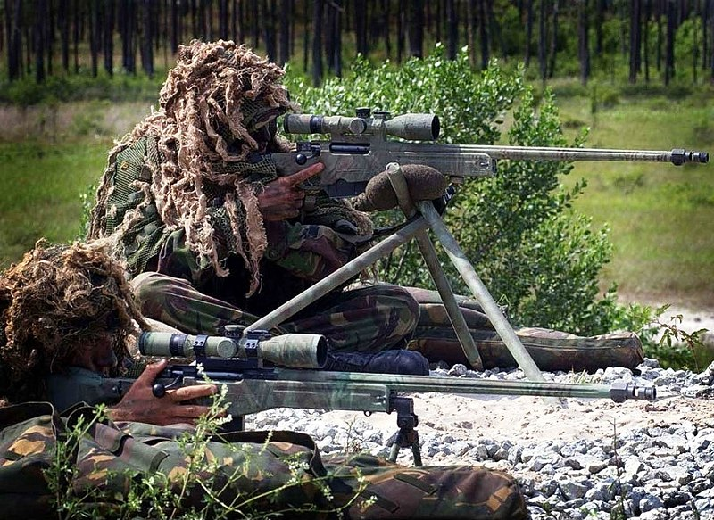 File:Royal Marines snipers displaying their L115A1 rifles.jpg