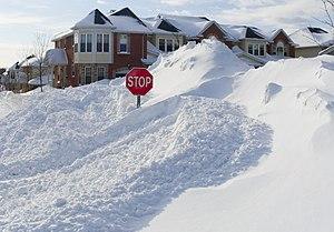 Winter of 2007-2008 in Ottawa, Canada.