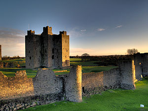 English: Trim Castle, Co Meath, Ireland, at su...