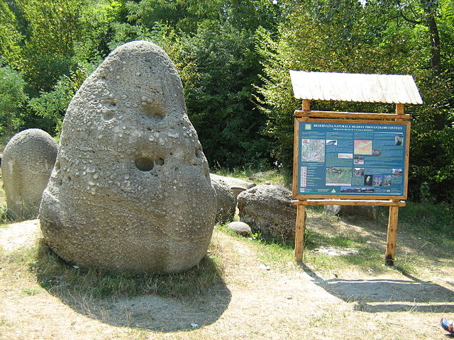 https://i2.wp.com/upload.wikimedia.org/wikipedia/commons/thumb/4/4d/Trovant_at_Costesti_in_Romania.JPG/640px-Trovant_at_Costesti_in_Romania.JPG
