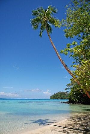 Coconut tree and lagoon, Huahine