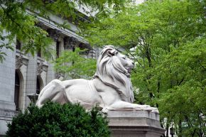 Lion sculpture, New York Public Library, New York, NY 07422u original