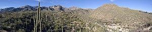 Looking toward Sabino Canyon, Arizona, on Febr...