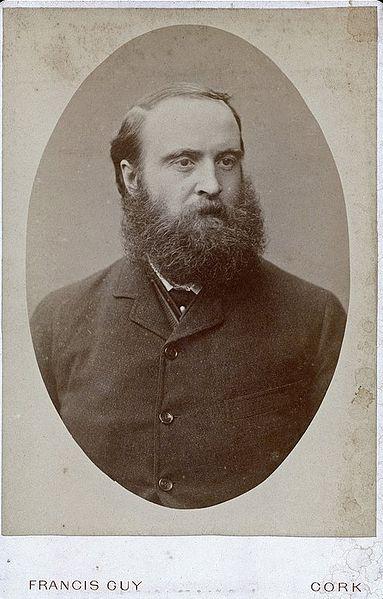 File:Charles Stuart Parnell cabinet card.jpg