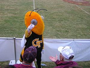 Georgia Tech's mascot (Buzz) visits with Virgi...