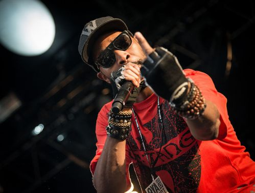 Image result for RZA