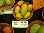 Rosigold mango.JPG