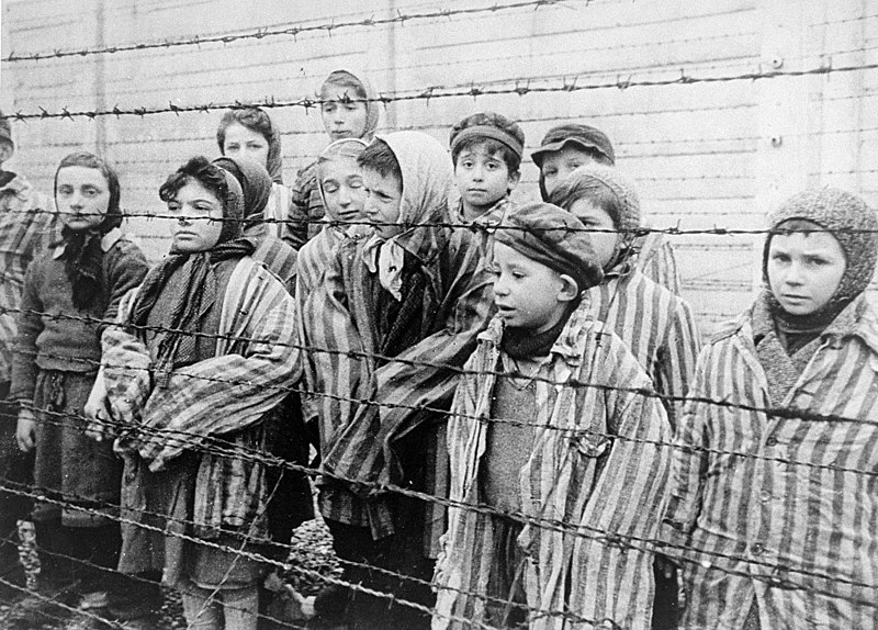 Datei:Child survivors of Auschwitz.jpeg