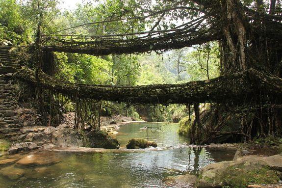 Image result for Meghalaya visit