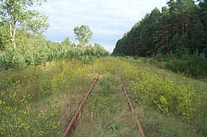 The rails at Treblinka.