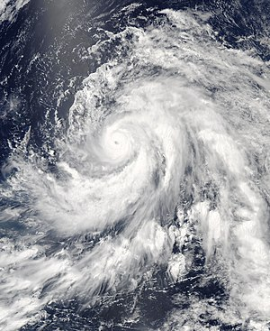 2003 Pacific typhoon season